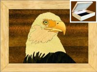 Bald Eagle Trinket Box