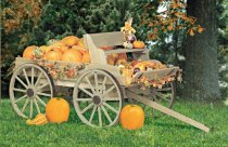 Rustic Buckboard Wagon Patterns