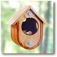 See-in Birdhouse Plan